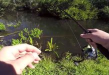 canal_fishing_florida_