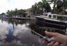 tarpon_canal_fishing