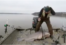 88-pound catfish